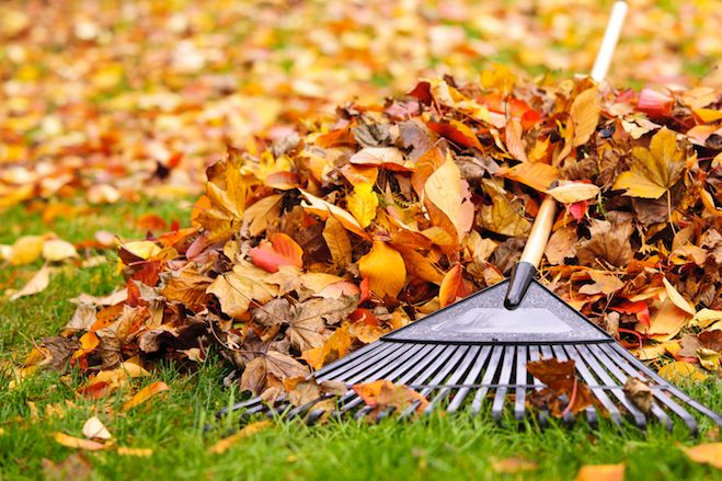 Autumn is Here: Are Your Properties Ready?