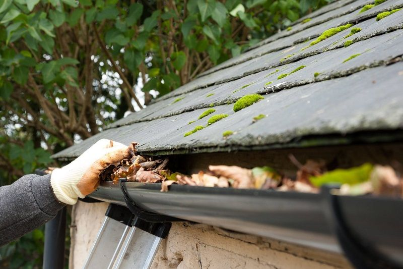5 Simple Gutter Cleaning Hacks This Fall